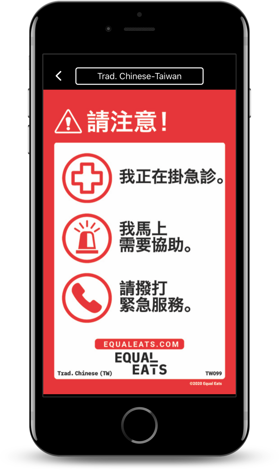 chinese food allergy translation cards