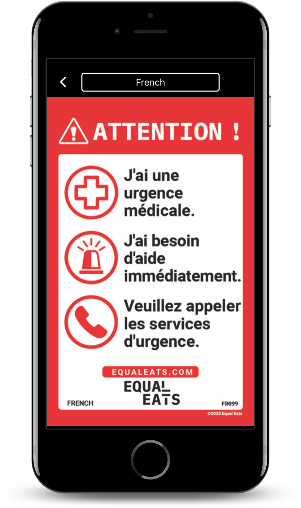 french food allergy translation cards
