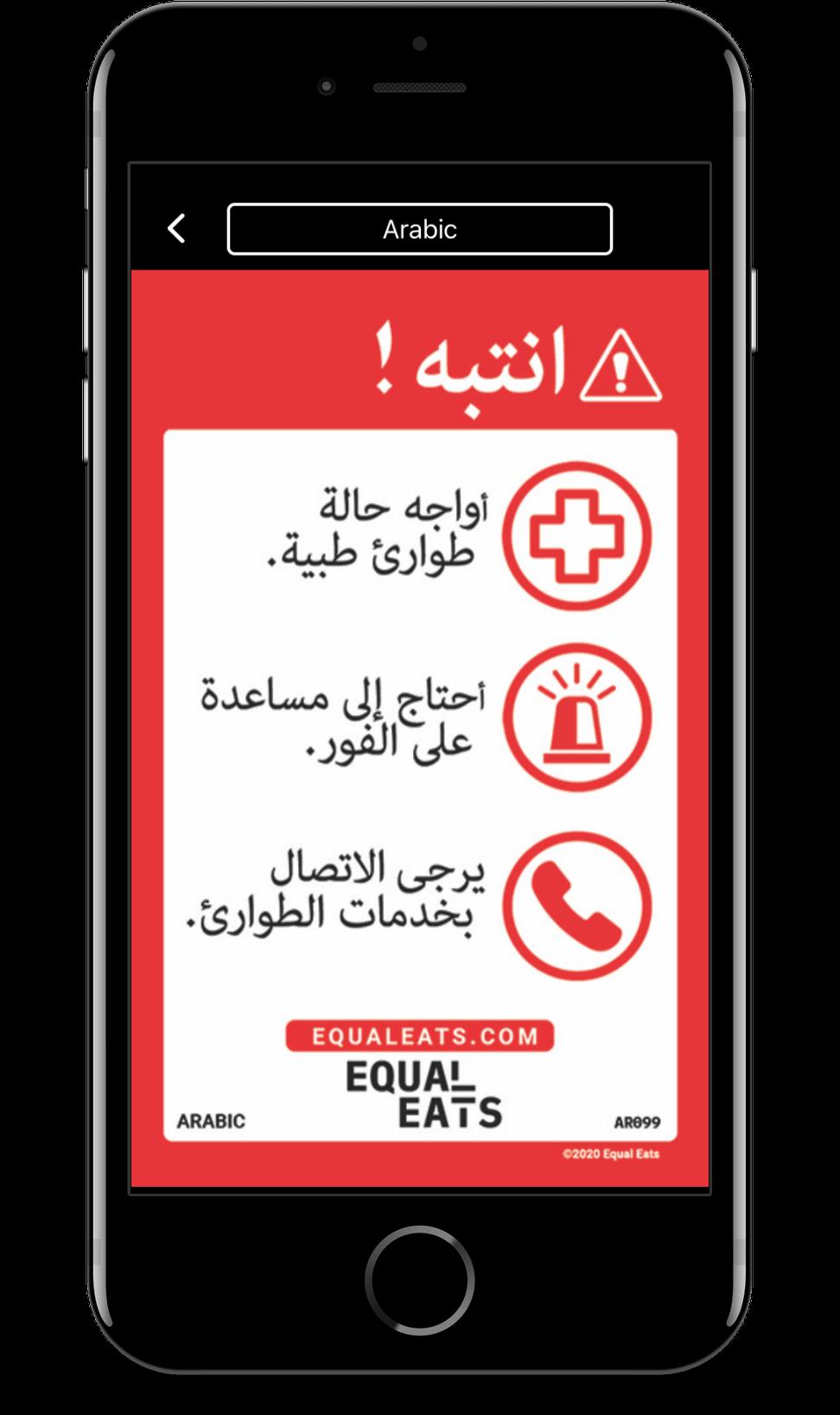 arabic food allergy translation cards