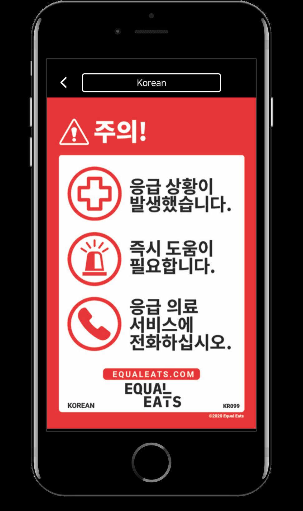 korean food allergy translation cards